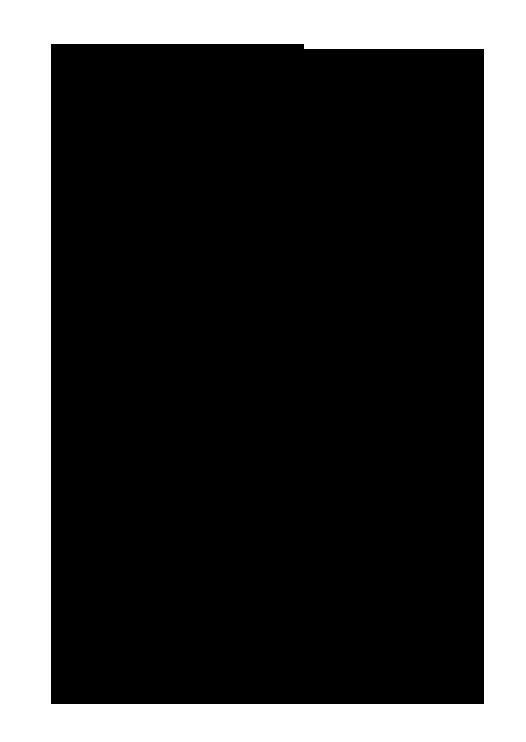 DynastySwords